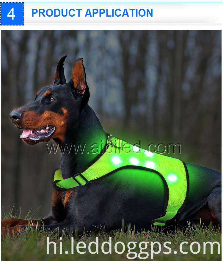 Glowing Led Dog Harness